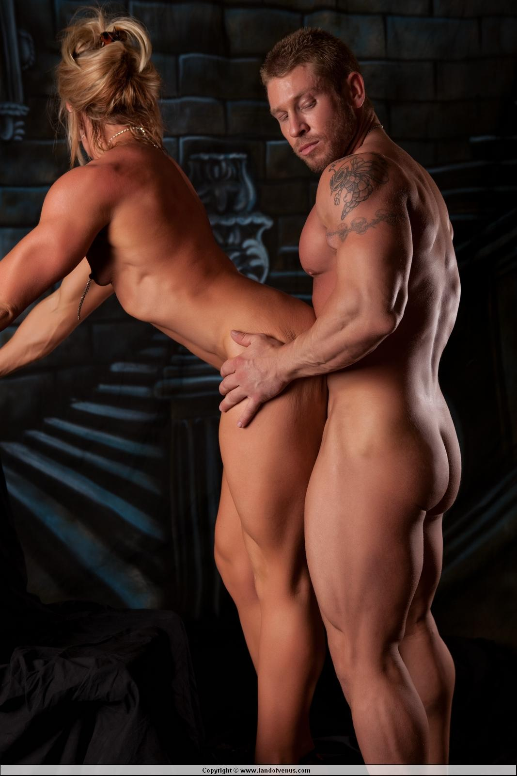 gay muscular milf escort movies