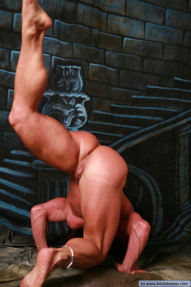 Muscle tits pics